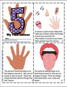 5 SENSES PACK   (MINI BOOK & POSTERS)