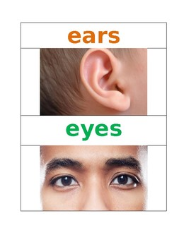 5 Senses Pre K Vocabulary Words NYCDOE