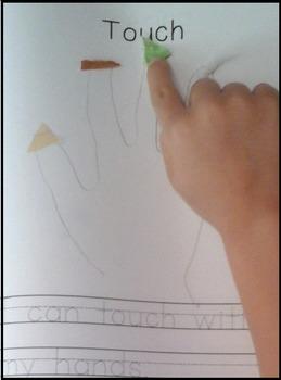 5 Senses & Five Senses Activity Book