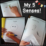 5 Senses Activities Book + FUN Popcorn Extension for Preschool, Kindergarten 1st