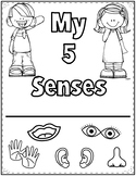 5 Senses Activity Book