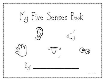 5 Senses Activity Booklet