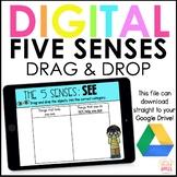 Digital 5 Senses Activity Drag & Drop   Google Slides   Di