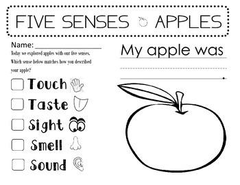 5 Senses - Apples