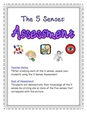 5 Senses Assessment