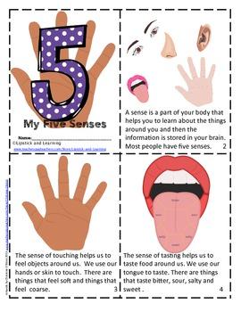 5 Senses Mini Book       My Five Senses      The Five Senses    The 5 Senses