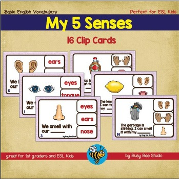 ESL Vocabulary: 5 Senses Clip Cards and 2 posters