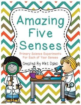 5 Senses Experiments