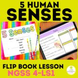 5 Senses | Flip Book | 4th Grade Science | Distance Learning Google
