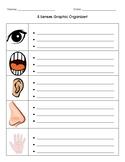 5 Senses Graphic Organizer