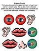 5 Senses Pack