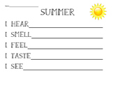 5 Senses Poem template 'summer'