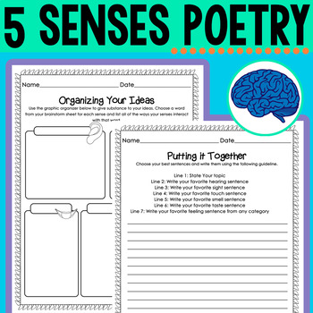 5 Senses Poetry | Guided Writing