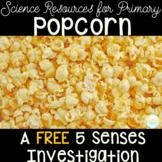 5 Senses - Popcorn Investigation FREEBIE