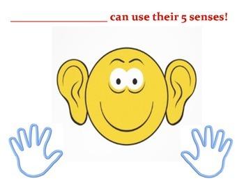 5 Senses Poster