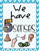 5 Senses Poster Bundle