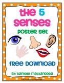 5 Senses Poster Set- FREE DOWNLOAD!