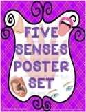 5 Senses Poster Set   Five Senses Poster Set