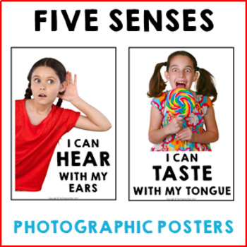5 Senses Poster Set with real photographs and display banner