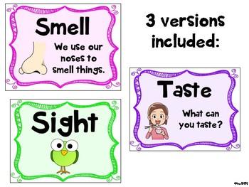 5 Senses Posters- 3 Versions