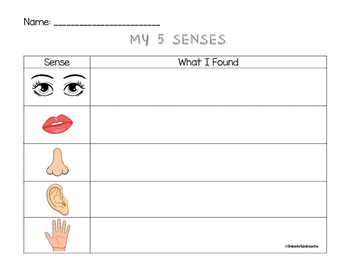 5 Senses Recording Sheet