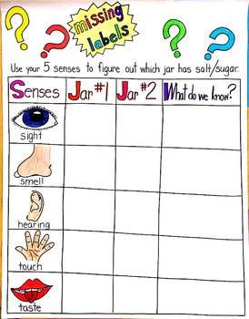 5 Senses Salt or Sugar Anchor Chart FREEBIE