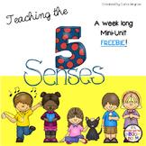5 Senses Science Unit