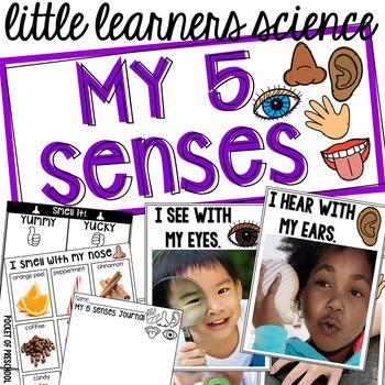 5 Senses - Science for Little Learners (preschool, pre-k, & kinder)