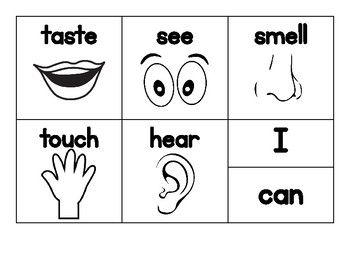 5 Senses Sentence Writing