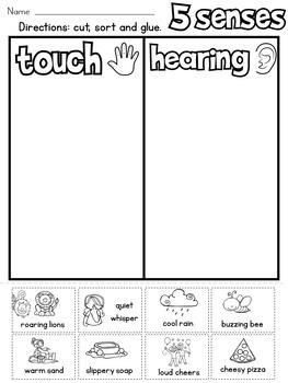5 senses sort by rock paper scissors teachers pay teachers. Black Bedroom Furniture Sets. Home Design Ideas