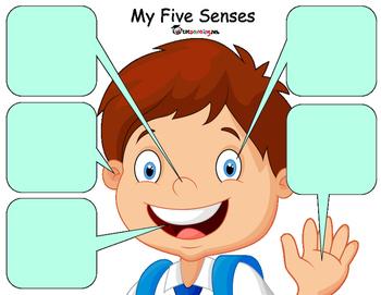 5 Senses Sorting Activity
