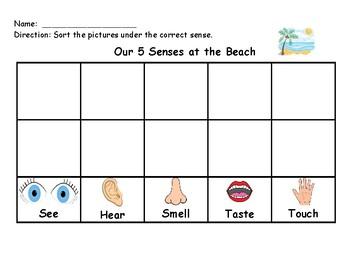 5 senses chart for kindergarten