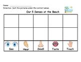 5 Senses Sorting Chart