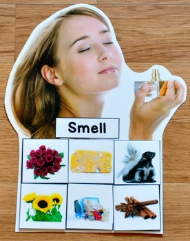 5 Senses Sorting Mats with Real Photos