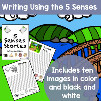 5 Senses Stories