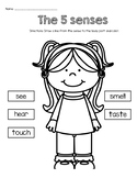 5 Senses Word Match