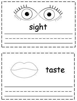 5 Senses Words Trace & Write {FREEBIE}