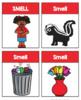 5 Senses Worksheets