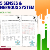 5 Senses and Nervous System Science Activity - Word Search