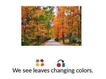 5 Senses in Fall for Special Education