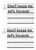 5 Senses keep me safe/protect me