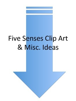 5 Senses misc. items