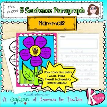 5 Sentence Paragraph Mammals