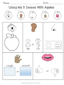 5 Senses  With Apples