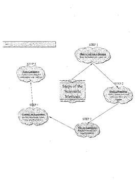 5 Steps of the Scientific Method