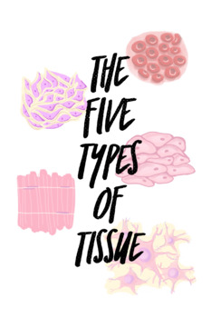 5 Types of Tissue Unit