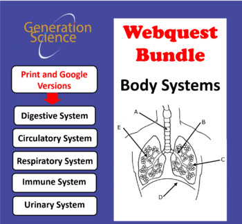 5 Webquests BUNDLED: Digestive, Urinary, Immune, Circulatory & Respiratory (NEW)