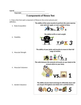 5 Components Of Fitness Test