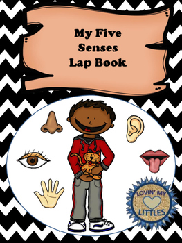 5 five senses interactive notebook or lap book