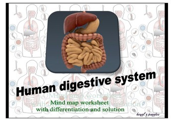 5 in 1: human digestive system mind maps, double puzzles,crosswords worksheets